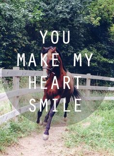 You make my heart smile. #horse #horses #equestrians Photo credit: Brooke Ashley Collins Model: King AHEART