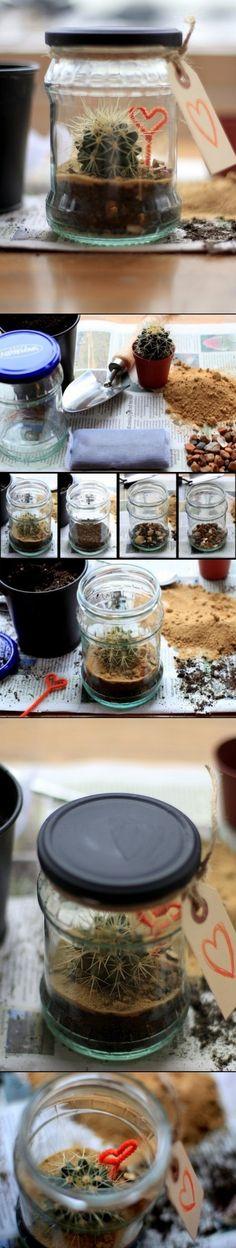 Cómo hacer un terrario pequeño. ✿⊱╮