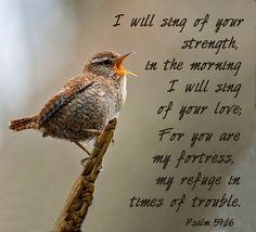 Psalm 150:6Every breathing thing—let it praise Jah. Praise Jah!