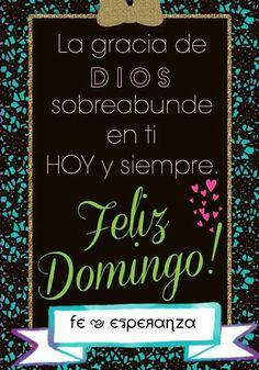 Feliz Domingo...