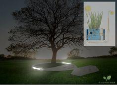 Imagina los entierros del futuro [I]: ataúd biodegradable