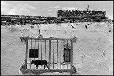 by Alex Webb Ciudad Camargo, Mexico, 1978.