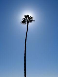 Newport Beach by Michael H Parker, via Flickr