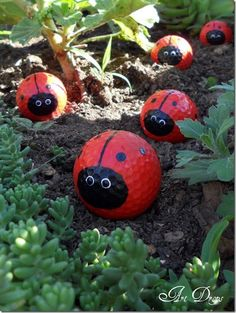 Lady bug golfballs