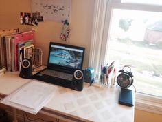 red-panda-studies:  Just reorganized my desk!