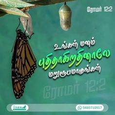 Bible Words In Tamil, Bible Words Images, Bible Quotes, Bible Verses, Christ In Me, Bible Verse Wallpaper, Phones, Mindfulness, Cases