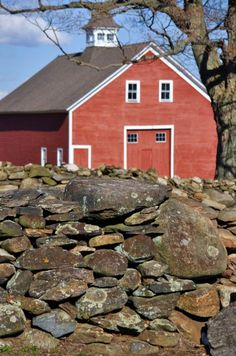Rock Wall And Red Barn, on Horsebarn Hill Road in Storrs, campus. Photographer: Mike Fillyaw (rock walls are everywhere in New England) Barn Cupola, Stone Fence, Country Barns, Farm Barn, Rock Wall, Stone Walls, Old Stone, Red Barns, Old Buildings
