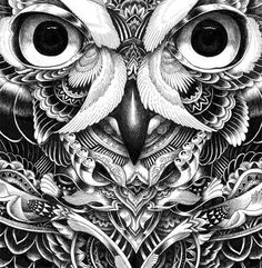 Owl Part 5 by Iain Macarthur, via Behance