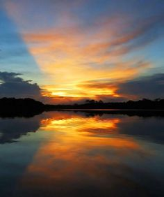Nascer do sol na Floresta Amazonica