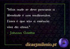 Mas onde se deve procurar a liberdade é nos sentimentos. Esses é que são a essência viva da alma. -Johann Goethe