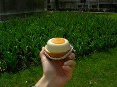 Tartelette mangue vanille sous fond de Jardin du Luxembourg. A découvrir sur : http://www.footingetfood.fr/2013/04/18/9-km-depart-luxembourg-direction-la-patisserie-des-gateaux-et-du-pain/