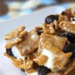 golden grams smores bars!