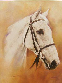 Desert Orchid Horse Racing, Race Horses, Horse Photos, Horse Art, Orchids, Deserts, Animals, Rum, Goals