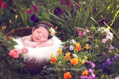 I would love to try an outside newborn shoot