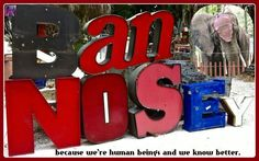*** 2nd NEW POSITIVE UPDATE *** Urge IRCC Florida To NOT Host Nosey Again!