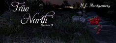 multitaskingmomma : Release Blitz & eARC Review: North Star (Polaris #1) by M.E. Montgomery
