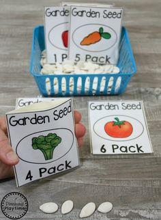 Cute Garden and Farm Activity for Preschool - Seed Counting #preschool #farmtheme #springpreschool #preschoolgames #preschoolfun #counting
