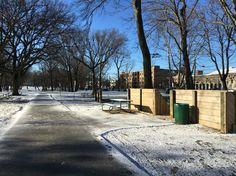 Winter time in NJ Winter Time, Sidewalk, Places, Side Walkway, Walkway, Walkways, Pavement