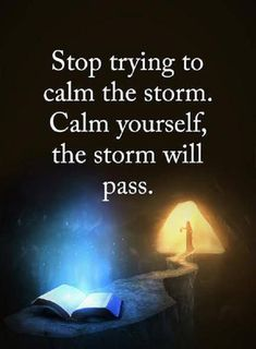 cool Inspirational Life Quotes Words of Wisdom Calm Yourself, the Storm Will Pass