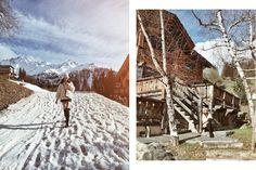 French Alps | Tara Milk Tea: Travel