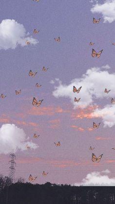 🦋🎀🦋𝚑𝚒 𝚊𝚗𝚍 𝚠𝚎𝚕𝚌𝚘𝚖𝚎 𝚝𝚘 𝚖𝚢 𝚗𝚎𝚠 𝚙𝚘𝚜𝚝! 🎀🦋🎀𝚝𝚑𝚎𝚖𝚎: aesthetic butterflies 🦋🎀🦋𝚌𝚘𝚕𝚘𝚛𝚜: lilac, orange, white 🎀🦋🎀𝚍𝚊𝚝𝚎: 22.06.20 🦋🎀🦋𝚝𝚒𝚖𝚎: 17:38 🎀🦋🎀𝚏𝚘𝚕𝚕𝚘𝚠𝚎𝚛: 1424 🦋🎀🦋𝚏𝚘𝚕𝚕𝚘𝚠 𝚖𝚎 𝚏𝚘𝚛 𝚖𝚘𝚛𝚎! 🎀🦋🎀𝙸 𝚏𝚘𝚕𝚕𝚘𝚠 𝚋𝚊𝚌𝚔! 🦋🎀🦋[𝙷𝚊𝚜𝚑𝚝𝚊𝚐𝚜]🦋🎀🦋 #butterfly #butterflies #sky #aesthetic 🎀🦋🎀[𝚃𝚊𝚐𝚜]🎀🦋🎀 {🧚🏻♀️} @_sweet_bear_ 𝚙𝚕𝚜 𝚐𝚘 𝚏𝚘𝚕𝚕𝚘𝚠 𝚖𝚢 𝚜𝚠𝚎𝚎𝚝 𝚊𝚗𝚐𝚎𝚕!!! {✨} @_sweet_aesthetic 𝚒𝚝'𝚜 𝚑𝚎𝚛 𝚘𝚝𝚑𝚎𝚛 𝚊𝚌𝚌!!! 🦋🎀🦋[𝚁𝚊𝚗𝚍𝚘𝚖 𝚃𝚊𝚐]🦋🎀🦋 {🌼} @estelle_lol  🎀🦋🎀𝚋𝚢𝚎 𝚊𝚗𝚍 𝚑𝚊𝚟𝚎 𝚊 𝚗𝚒𝚌𝚎 𝚍𝚊𝚢! ~ @horse_dreamer   #freetoedit