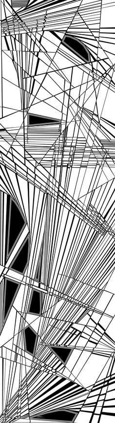 nineteenth - dynamic black and white, optical obsession, organic abstract, over 8 feet tall - http://fineartamerica.com/featured/nineteenth-douglas-christian-larsen.html