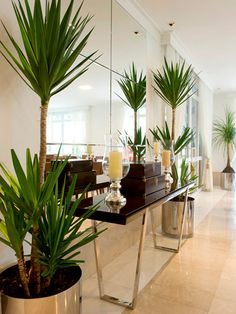 House Plants Australia – Guide to the Best Indoor Plants Entryway Furniture, Luxury Furniture, Entryway Decor, Decoration Hall, Decoration Plante, Best Interior Design Apps, Contemporary Interior Design, Modern Entryway, Entry Way Design