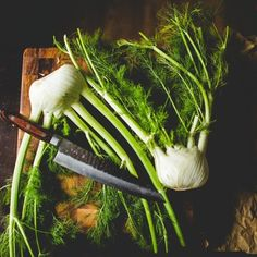 The Vegetable Butcher Really Wants You to Give Fennel a Chance — The Vegetable Butcher