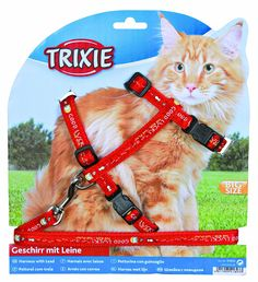 Trixie 41893 Cat Set of Harness and Lead for Large Cats Nylon Patterned 34 - 57 cm / 13 mm * Want to know more, click on the image. (This is an affiliate link and I receive a commission for the sales)