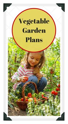 Vegetable Garden Layout Template planning a garden
