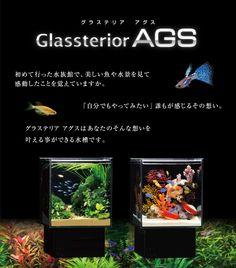 Glassterior AGS グラステリア アグス 初めて行った水族館で、美しい魚や水景を見て感動したことを覚えていますか。「自分でもやってみたい」誰もが感じるその想い。グラステリア アグスはあなたのそんな想いを叶える事ができる水槽です。