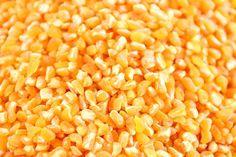 Agricultura prepara 22 mil tareas para la siembra de maíz   NOTICIAS AL TIEMPO