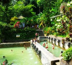 Hot Spring Banjar  in Lovina Bali,Indonesia..Good Healing Hot Water.Love Indonesia