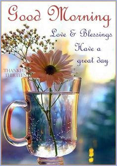 Good-Morning-Blessings live abd blessings have a great day Good Morning Picture, Good Morning Friends, Good Morning Greetings, Good Afternoon, Good Morning Good Night, Morning Pictures, Good Morning Wishes, Good Morning Images, Good Morning Quotes