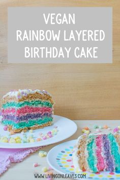 Amazing vegan rainbow striped birthday cake! Super simple recipe too.