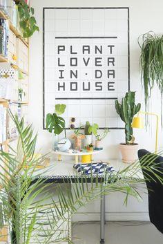Plant lover in da house. Ficus Elastica, Botanical Interior, Plants Quotes, White Wall Decor, Plants Are Friends, Large Plants, Plant Decor, Houseplants, Indoor Plants