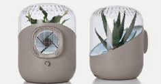 Andrea: air purifier, invented by French designer Mathieu Lehanneur with Harvard professor David Edward elevates common houseplants to heroic status as they eliminate noxious chemicals that pollute indoor air, France, 2009 Mathieu Lehanneur, Eco Design, Design Ideas, Chlorophytum, Household Plants, Gadgets, Gadget Gifts, Air Filter, Diffuser