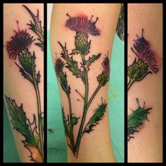 watercolor thistle tattoo - Google Search