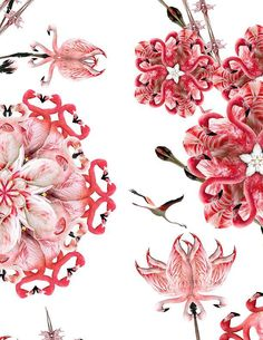 Exactly what i was thinking for my next tattoo- Flamingo flower!!!