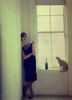 Audrie + cat # love
