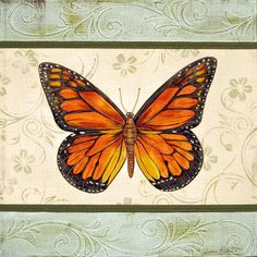 Lovely Butterfly-2 Painting  - Lovely Butterfly-2 Fine Art Print