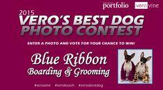 Vero's Best Dog Photo Contest