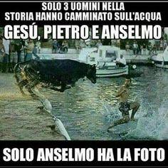 Anselmo - 18439