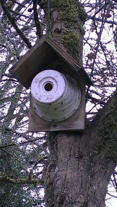 Bird house made from a flower pot...