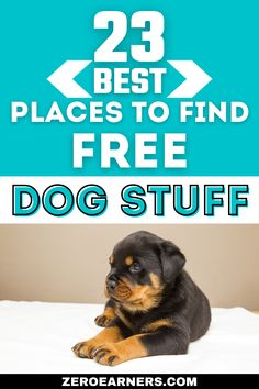 Free Books By Mail, Free Samples Without Surveys, Disability Help, Farm Dogs, Free Catalogs, Get Free Stuff, Dog Pattern, Vintage Dog, Free Products