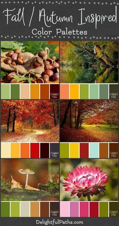 Fall / Autumn Inspired Color Palettes - Delightful Paths Fall / Autumn inspired color palettes from images. These palettes consist of yellows, oranges, reds, browns, with muted greens and splashes of blue. Fall Color Schemes, Color Schemes Colour Palettes, Fall Color Palette, Colour Pallette, Color Combos, Brown Color Palettes, Fall Paint Colors, Summer Color Palettes, Autumn Inspiration
