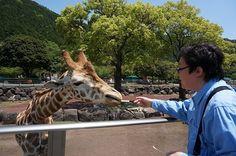 【伊豆旅行】キリンさんに餌やり。|★カメラのキタムラ公式ブログ★