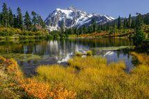 Fall at Picture Lake - Lidija Kamansky/Getty Images