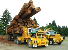 On Vancouver Island with giant trucks....Updated with pics of the haul roads - General Topics - DHS Forum
