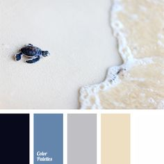 Transparent watercolor palette. Delicate beige and shades of sky blue are mixed gently and separated. Blue-black color of sea turtle attracts attention and looks bright in this leisurely pastel scale. This color scheme is almost universal; it is equally well suited for bedroom and bathroom.